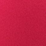 Fuchsia 109
